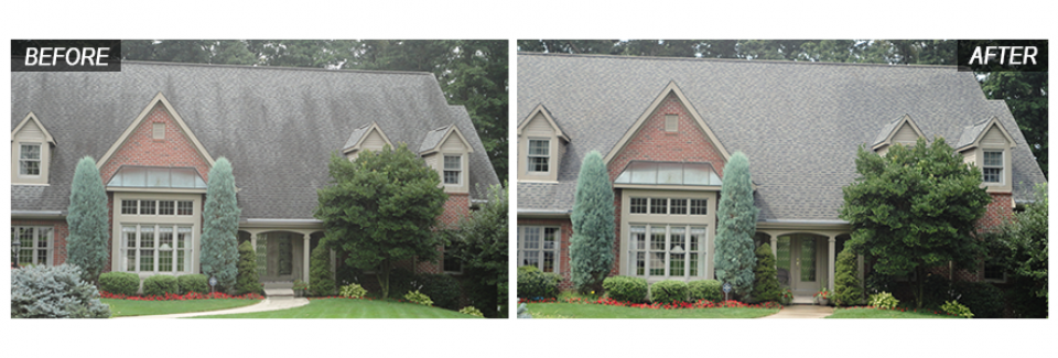 home western pa roof cleaning - Roof Cleaning